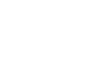 Netsimpel Huisstijl ontwikkeling logo